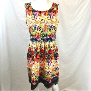 Cynthia Rowley Rainbow Abstract Floral Dress